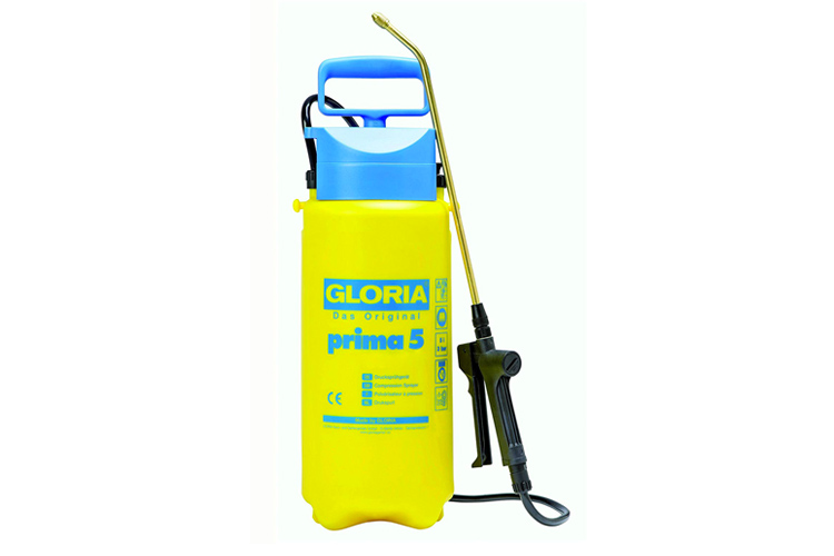 gloria-prima-5-avis